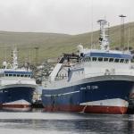 Rókur og Lerkur landa í Runavík í dag