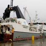Polar Nanoq farin aftur á makrelveiðu