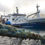 Landa makrel í Fuglafirði