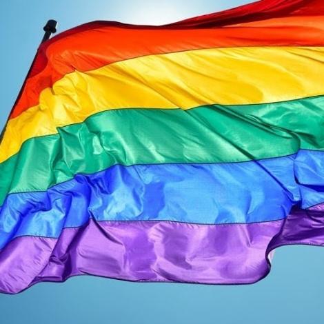 LGBT fegnast um fjølbroytt tilboð til næmingar