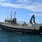 Seks skip hava fingið fiskiloyvið til menningarkvotur
