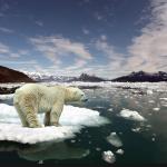 Spennandi arktisk vísindi til føroyskar skúlar á Tjóðsavninum