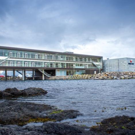 Rakstrarúrslitið hjá Bakkafrost var 168 milliónir krónur