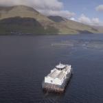 Kryvjivirkið hjá Marine Harvest á Strondum er komið á Russlandslistan