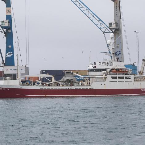 Hoyvík góðan fiskiskap í ES-sjógvi