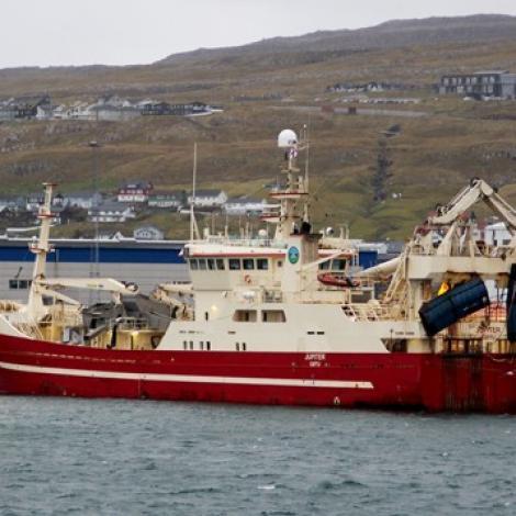 Umleið 1500 tons verða landað á Tvøroyri