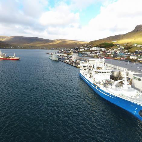Tvey skip komin inn við makreli á Tvøroyri