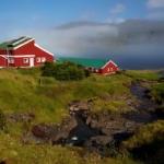 Fiskaaling vertur fyri altjóða vísindaráðstevnu