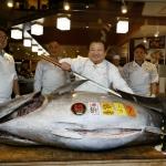 Japan: Tunfiskur seldur fyri methøgan prís