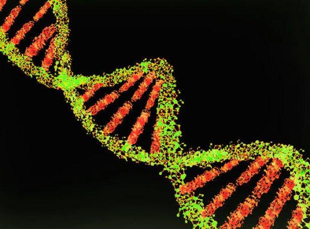 DNA-strongur (Mynd: Visualhunt)