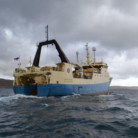 Arctic Viking er á veg til Føroya við fullari last av rækjum
