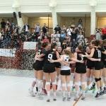Mynd: Elite Volley Aarhus
