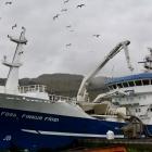 Finnur Fríði landað 850 tons av markeli