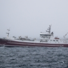 1100 tons landast til Faroe Pelagic í Kollafirði