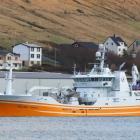 Isafold landað makrel í Fuglafirði