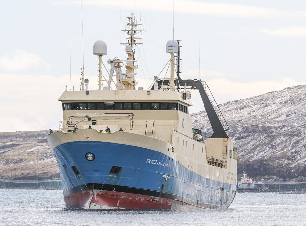 Arctic Viking (Savnsmynd: Sverri Egholm)
