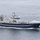 Høgaberg hevur fiskað svartkjaftakvotuna