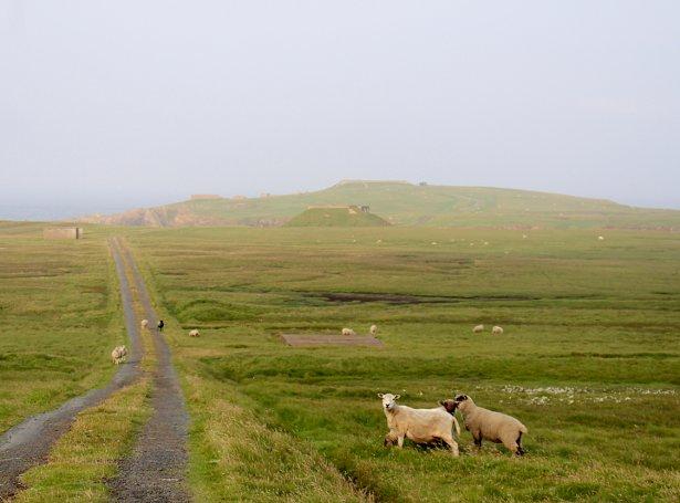 Lamba Ness norðast í Hetlandi hevur fyrr hýst eini RAF hernaðarstøð (Mynd: shetnews)