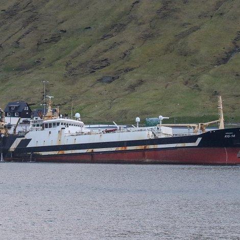 Næraberg landar svartkjaft í Kollafirði
