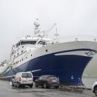 Tuugaliik landar 600 tons í Kollafirði