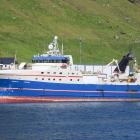 Fleiri landingar í Kollafirði