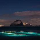 Útflutningurin av fiskavørum minkaður 11 prosent í virði