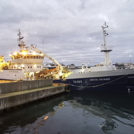 Fleiri skip bíða til svartkjafturin kemur í føroyskan sjógv