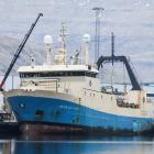Arctic Viking landar rækjur í Kollafirði