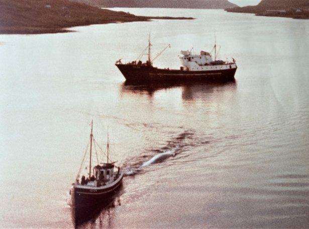 Mynd: Jónstein Dam, sáli