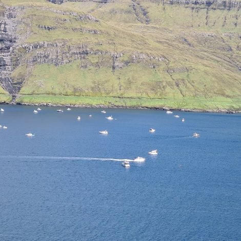 Nógvir bátar til hugna í Hvalvík