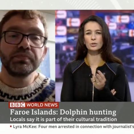 Kjak á BBC: Vit drepa springararnar fyri føðina